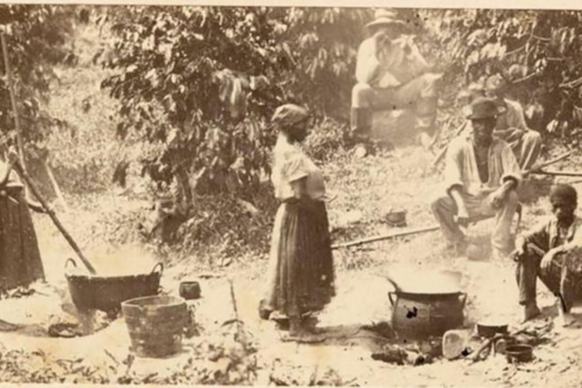 Como a divisão de terras de 1850 perpetua a desigualdade racial no Brasil
